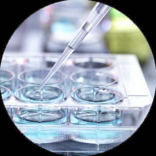 Visualization cancer research