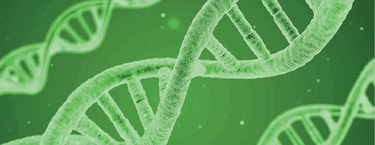 Erstes Netzwerktreffen der Bayerischen Molekularen Tumorboards