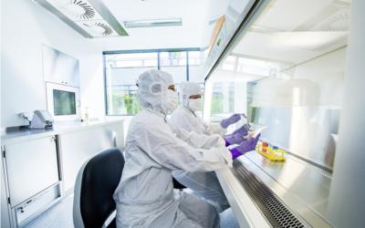 Forscher untersuchen den Einsatz einer neuartigen Zelltherapie