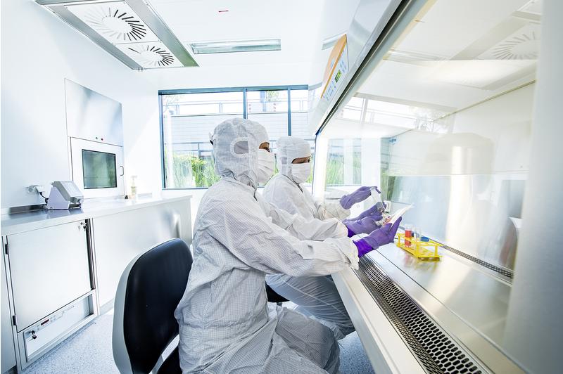 Im GMP-Labor der Medizin 5 werden die neuen CAR-T-Zellen für die vom BMBF geförderte Studie selbst hergestellt. Foto: Knut Pflaumer